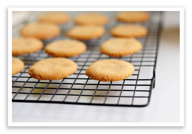 Basic Peanut Butter Cookie Recipe