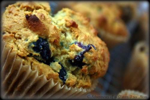 Knee Slappin' Good Blueberry Muffins