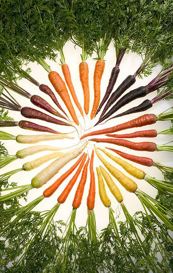 Rainbow Carrot salad