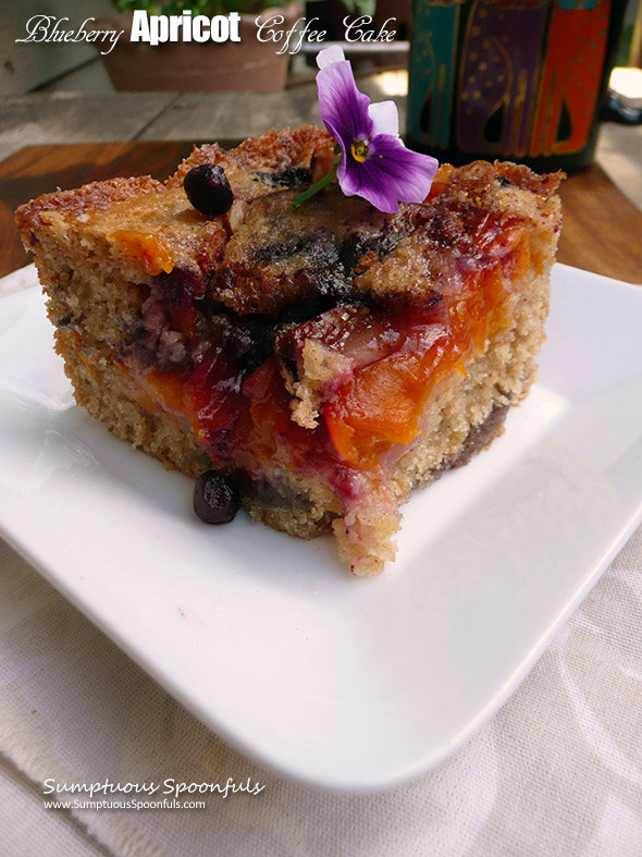 Fresh Blueberry Apricot Coffee Cake