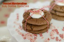 Toasted Marshmallow Hot Cocoa Cookies