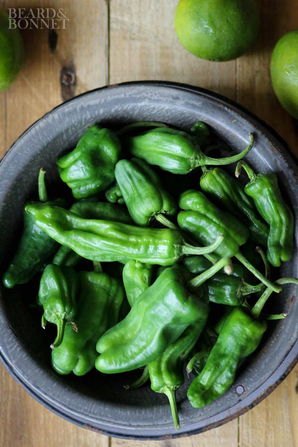 Blistered Padron Peppers