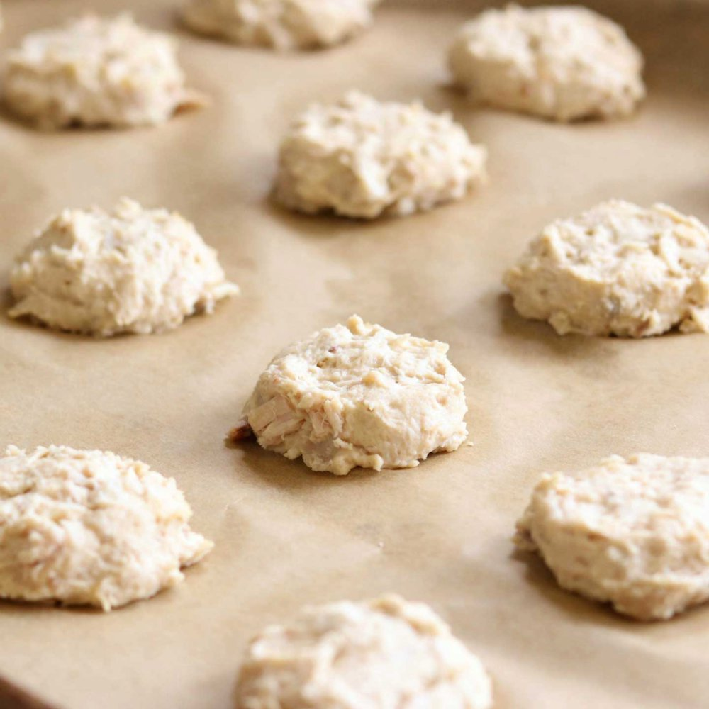 4-Ingredient Chicken and Biscuits Homemade Dog Treats