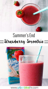 Summer's End Strawberry Smoothie