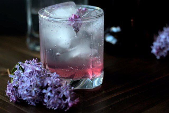 Gin & Tonic with Lilac Syrup