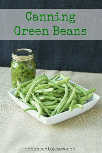 Canning Green Beans   How To Can Green Beans