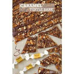 Gooey Caramel Turtle Bark