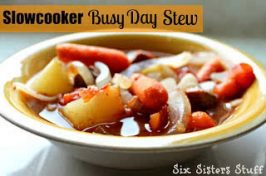 Slow Cooker Busy Day Stew