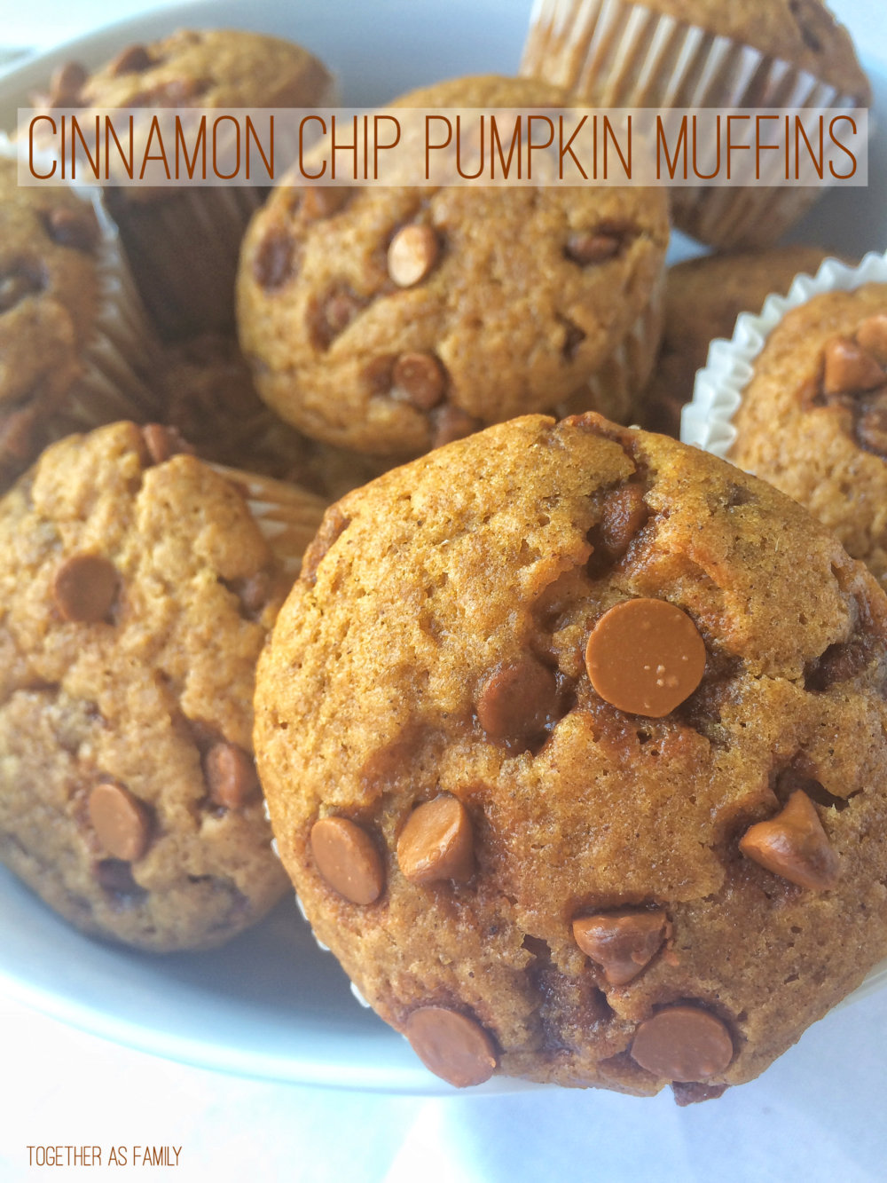 Cinnamon Chip Pumpkin Muffins