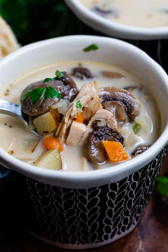 30 Minute Chicken and Mushroom Soup